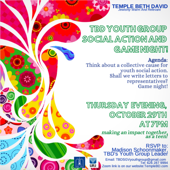 Temple Beth David Youth Group Social Action and Game Night