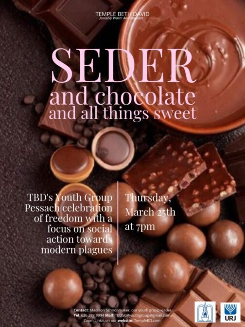 temple beth david youth group chocolate seder